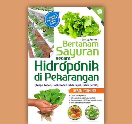 bertanam-sayuran-secara-hidroponik-di-pekarangan01