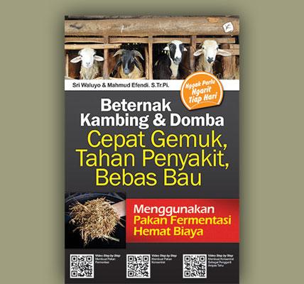beternak-kambing-dan-domba-cepat-gemuk-tahan-penyakit-bebas-bau01