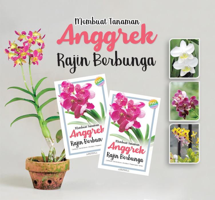 bestseller-membuat-tanaman-anggrek-rajin-berbunga