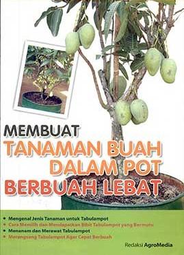membuat-tanaman-buah-dalam-pot-berbuah-lebat