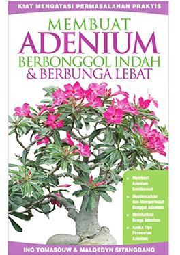 membuat-adenium-berbonggol-indah-&-berbunga-lebat