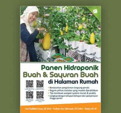 panen-hidroponik-buah-&-sayuran-buah-di-halaman-rumah-rev