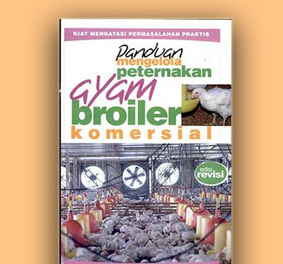 ayam broiler komersial