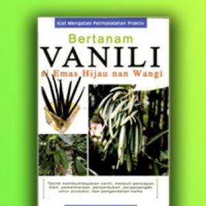 bertanam vanili