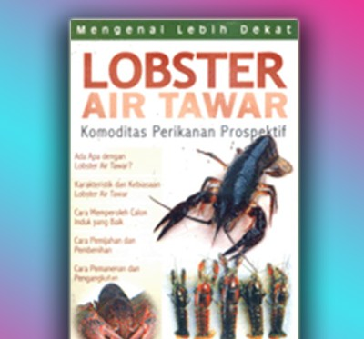 lobster air tawar
