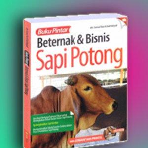 beternak& bisnis sapi potong