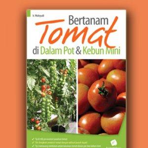 bertanam tomat di dalam pot & kebun mini