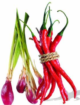 manfaat--buah-sayur-herba-obat-1