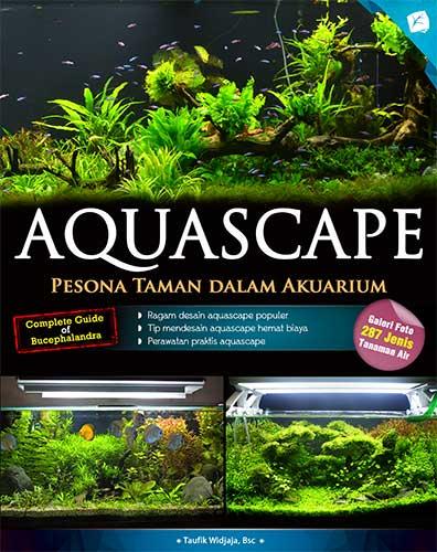 aquascape-pesona-taman-dalam-akuarium2