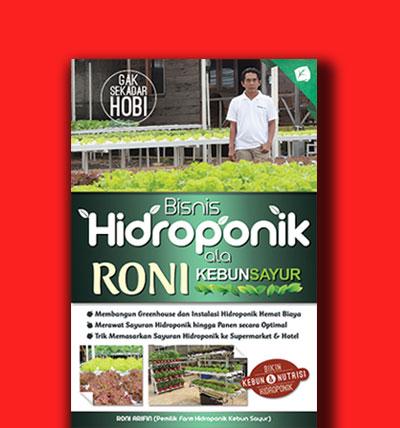 hidroponik kebun sayur