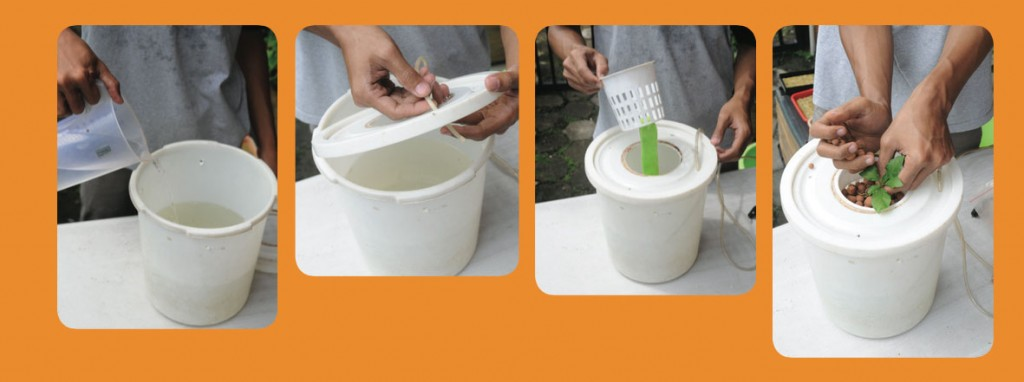 hidroponik, sistem bucket tunggal