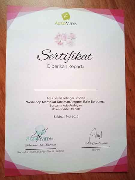 Sertifikat untuk peserta workshop Membuat Tanaman Anggrek Rajin Berbunga