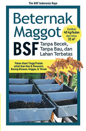beternak maggot bsf tanpa becek bau dan lahan terbatas